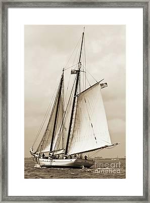 Schooner Sailboat Spirit Of South Carolina Sailing Framed Print