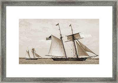 Schooners Pride Of Baltimore And Lynx Framed Print