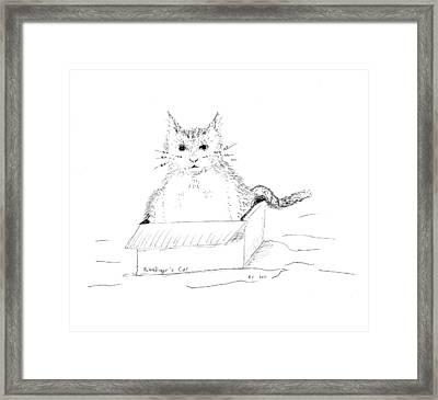 Schrodinger Cat Framed Print