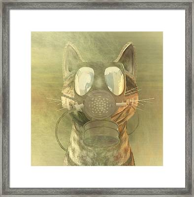 Schrodinger Underestimates The Cat. Framed Print by Carol and Mike Werner