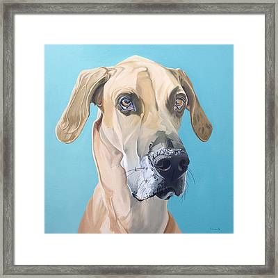 Scooby Framed Print