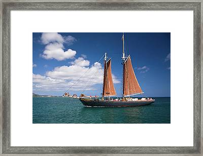 Scooner Framed Print by Diego Pagani