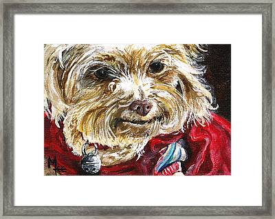 Scooter From Muttville Framed Print
