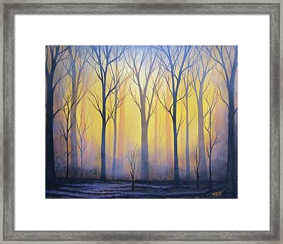 Scorched Earth Framed Print by Rachel Bingaman