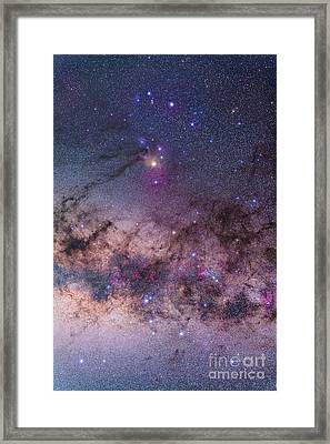 Scorpius With Parts Of Lupus And Ara Framed Print