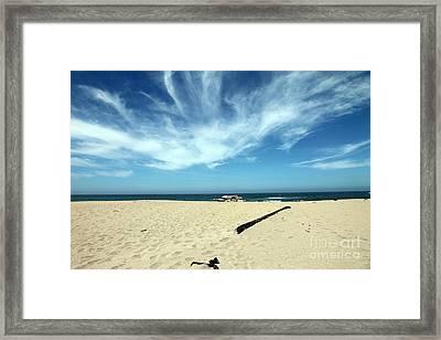 Scott Creek Beach California Usa Framed Print by Amanda Barcon