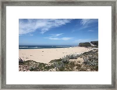 Scott Creek Beach Hwy 1 Framed Print by Amanda Barcon