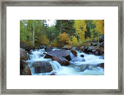 Framed Print featuring the photograph Scott Gomer Creek At Guanella Pass by Marie Leslie
