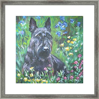 Scottish Terrier In The Garden Framed Print