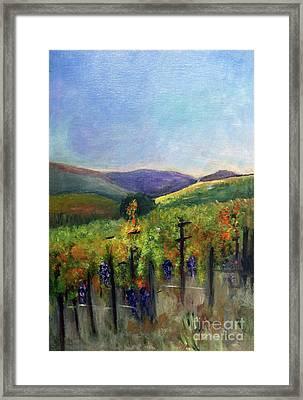 Scotts Vineyard Framed Print by Donna Walsh