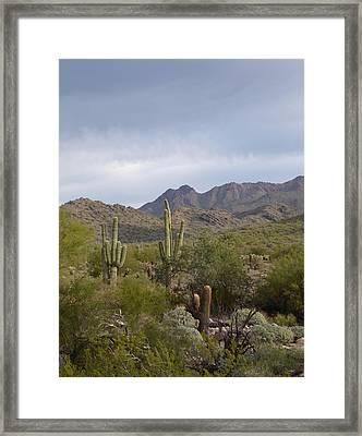 Scottsdale Skyline Framed Print by Gordon Beck