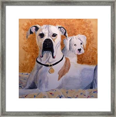 Scout And Jasper Framed Print by Jeff Chase