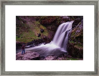 Scouting At Moose Falls Framed Print