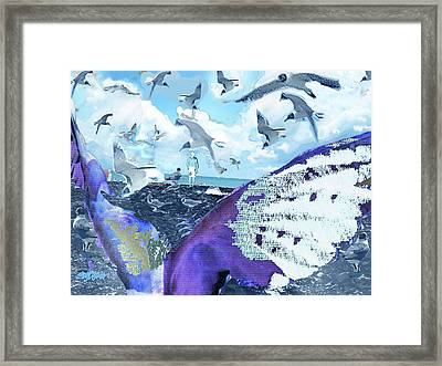 Scream Of The Gulls Framed Print by Seth Weaver
