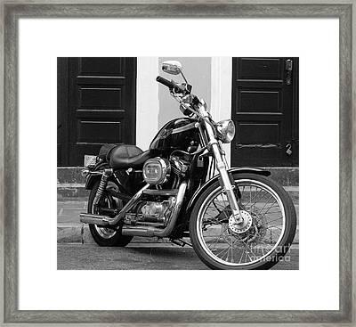 Screamin Eagle Framed Print by Debbi Granruth