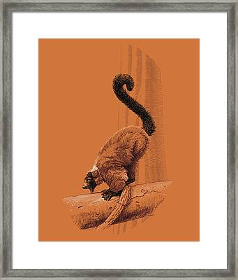 Screaming Lemur Framed Print