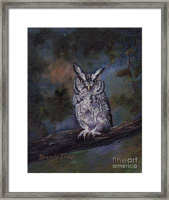 Framed Print featuring the painting Screech Owl by Brenda Thour
