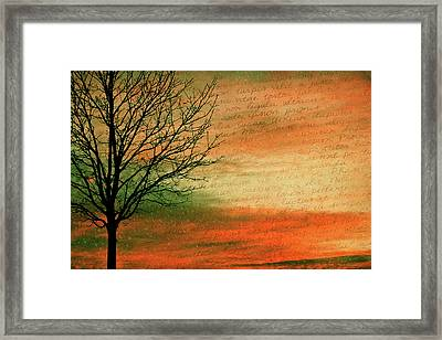 Scribble At Sunset Framed Print by Trish Tritz