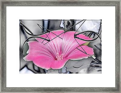 Scribble Petals..... Framed Print