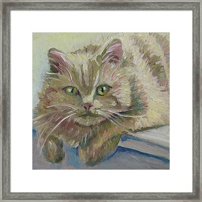 Framed Print featuring the painting Scruffy by Susan  Spohn