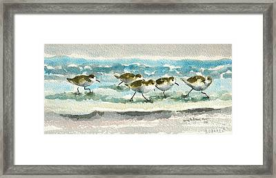 Scurrying Along The Shoreline 2  1-6-16 Framed Print