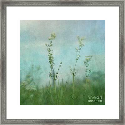 Summer Meadow Poem 3 Framed Print