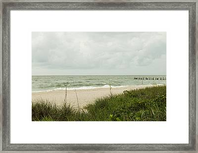 Sea Birds Awaiting The Rain Framed Print
