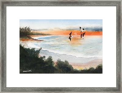 Sea Birds Framed Print by Bobby Walters