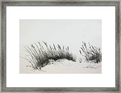 Sea Breeze Framed Print by Ben Vines Jr