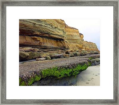 Sea Cliff Framed Print