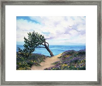 Sea Coast At Half Moon Bay Framed Print by Laura Iverson