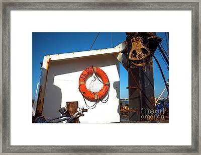 Framed Print featuring the photograph Sea Dog Barnegat Light by John Rizzuto