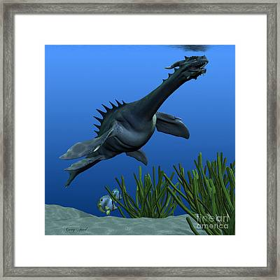 Sea Dragon On Reef Framed Print by Corey Ford