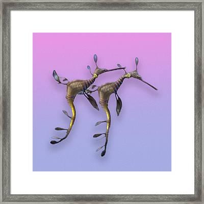 Sea Dragons Framed Print by Betsy Knapp