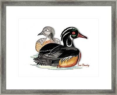 Framed Print featuring the painting Sea Ducks by Anne Beverley-Stamps