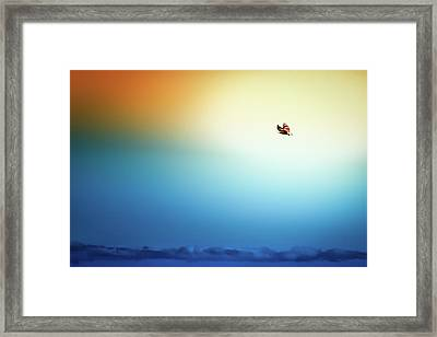 Sea Eagle On High Framed Print