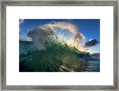 Sea Feathers Framed Print by Sean Davey