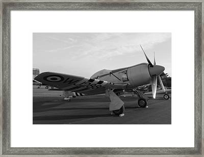 Sea Fury Framed Print by Aircraft  In Motion