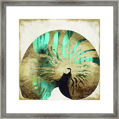 Sea Gems II Framed Print by Mindy Sommers
