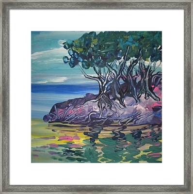 Sea Grapes By Lois Framed Print by Art Without Boundaries