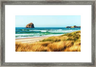 Sea-grass Dunes Framed Print
