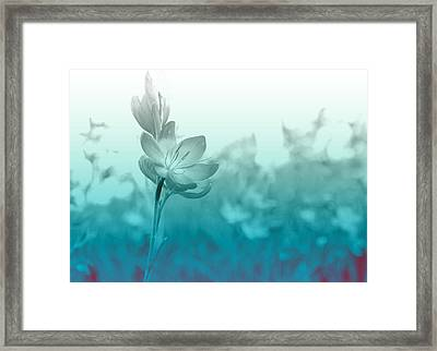 Sea Green Haze Framed Print by Barbara  White
