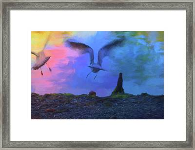 Framed Print featuring the photograph Sea Gull Abstract by Jan Amiss Photography