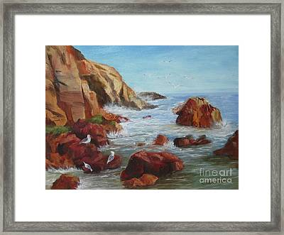 Sea Gulls Framed Print