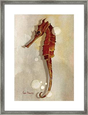 Sea Horse In Watercolor Framed Print by Anne Beverley-Stamps