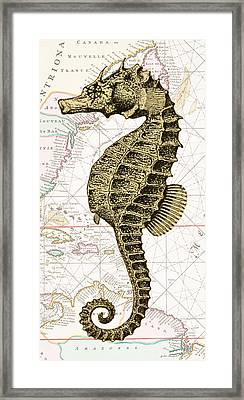 Sea Horse Nautical Chart Framed Print by Erin Cadigan