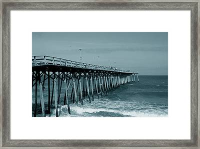 Sea Legs Framed Print