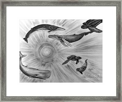 Sea Life Framed Print by Kami Catherman