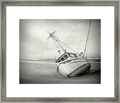 Sea Lion II - On The Beach Framed Print by HW Kateley