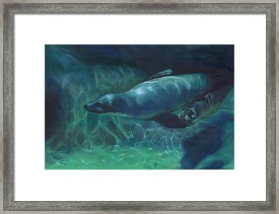 Sea Lion Mother And Baby Framed Print by Joan Hogan